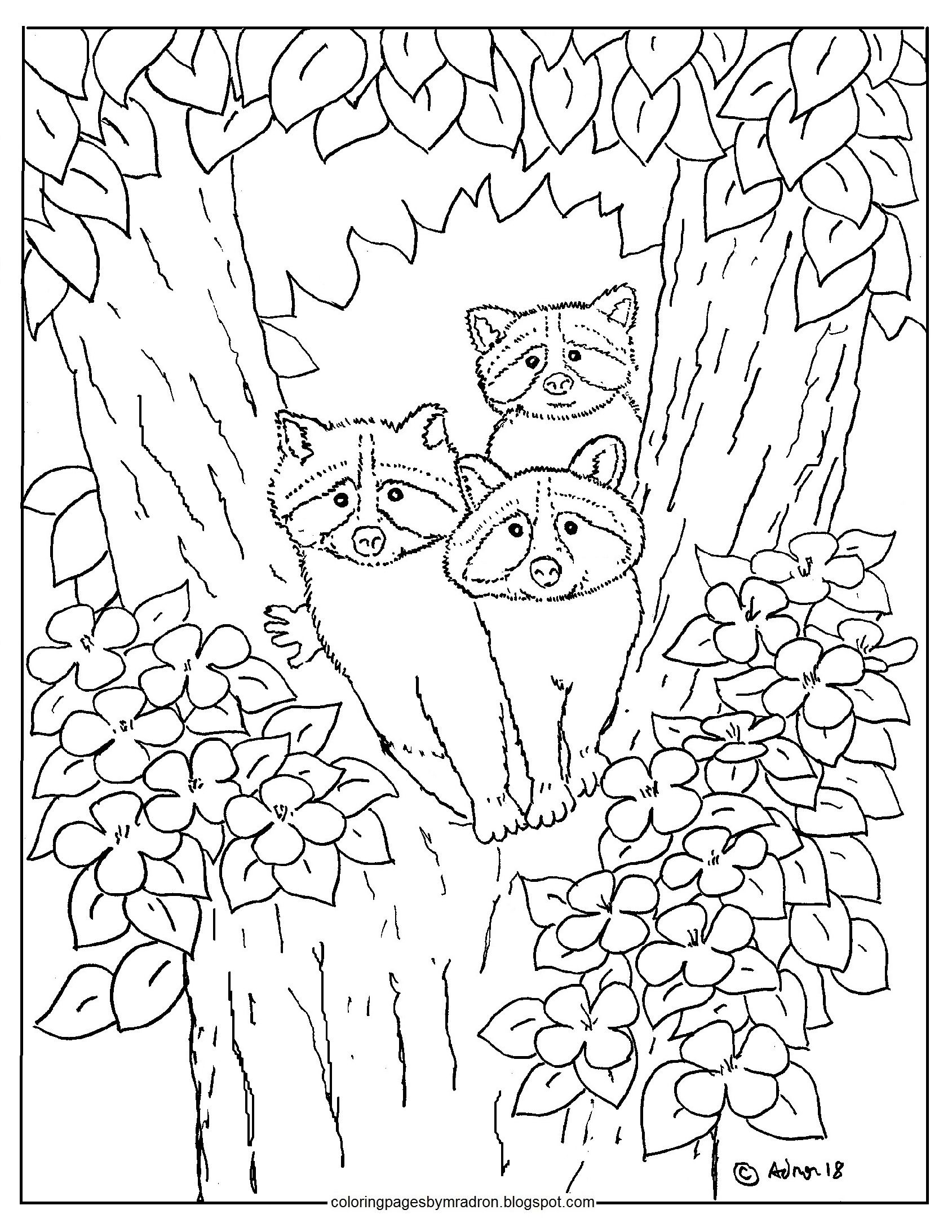 baby raccoon coloring page printable baby raccoons in a tree hundreds more at my coloring baby page raccoon