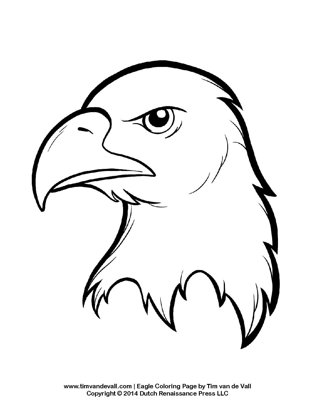 bald eagle coloring sheet bald eagle coloring pages download and print for free bald coloring eagle sheet