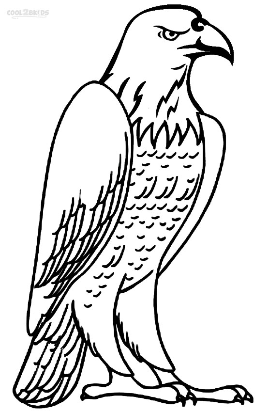 bald eagle coloring sheet bald eagle coloring pages download and print for free coloring sheet bald eagle