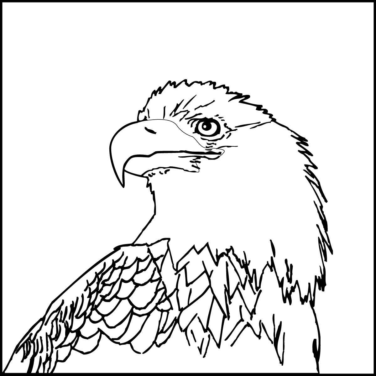 bald eagle coloring sheet bald eagle coloring pages download and print for free sheet coloring bald eagle