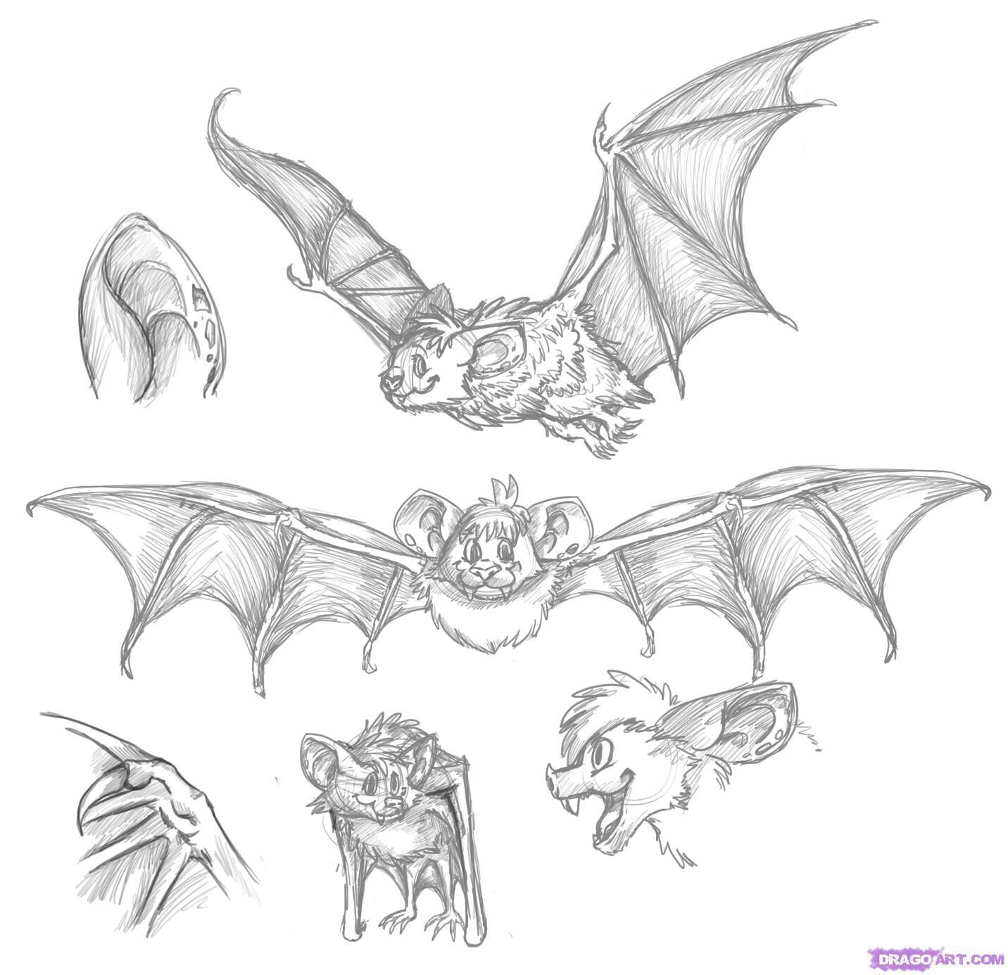 bat wings drawing bat wings drawing bat wings by cybololz drawdragons bat wings drawing