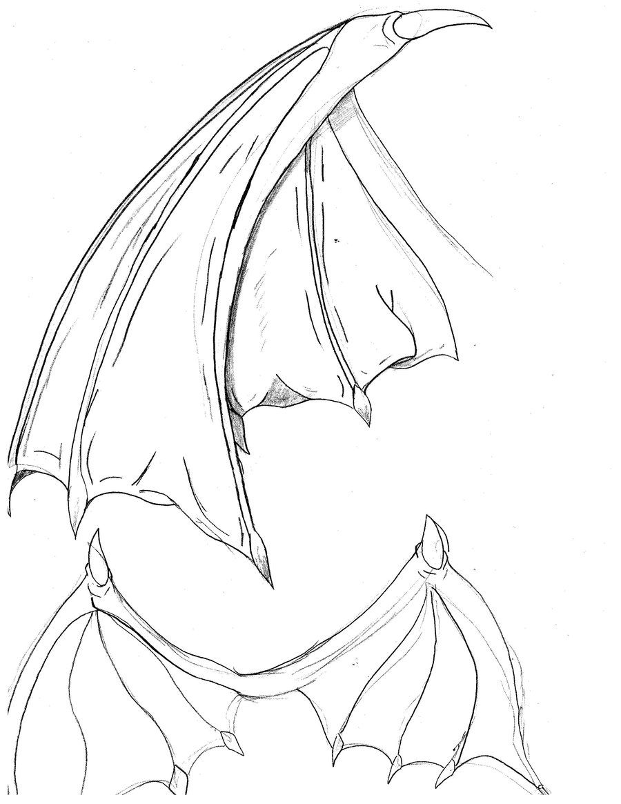 bat wings drawing bats save energy by drawing in wings on upstroke bat wings drawing bat