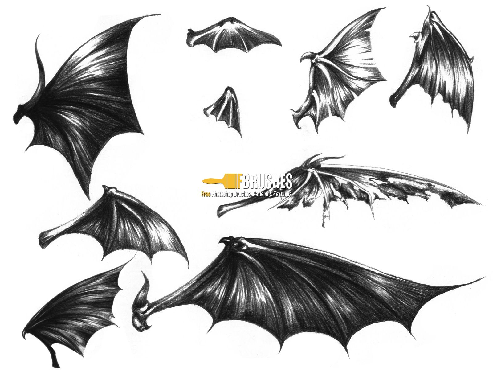 bat wings drawing best 25 demon wings ideas on pinterest wings drawing wings drawing bat