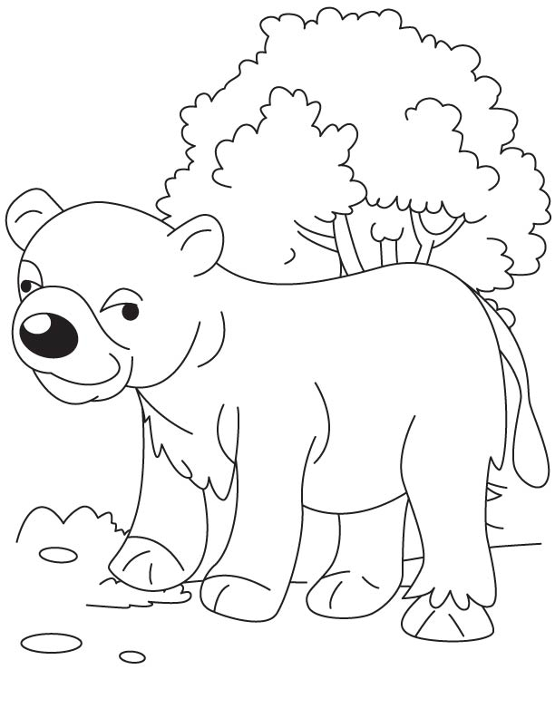 bear cub coloring pages bear cub in jungle coloring page download free bear cub coloring cub bear pages