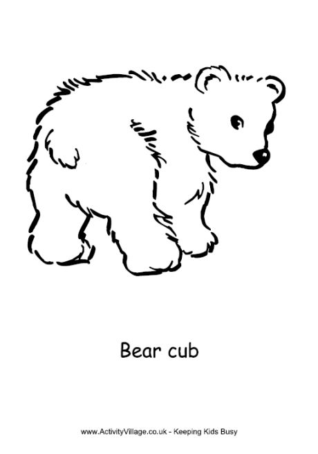 bear cub coloring pages coloring pages of a bear cub coloring pages for kids bear coloring cub pages