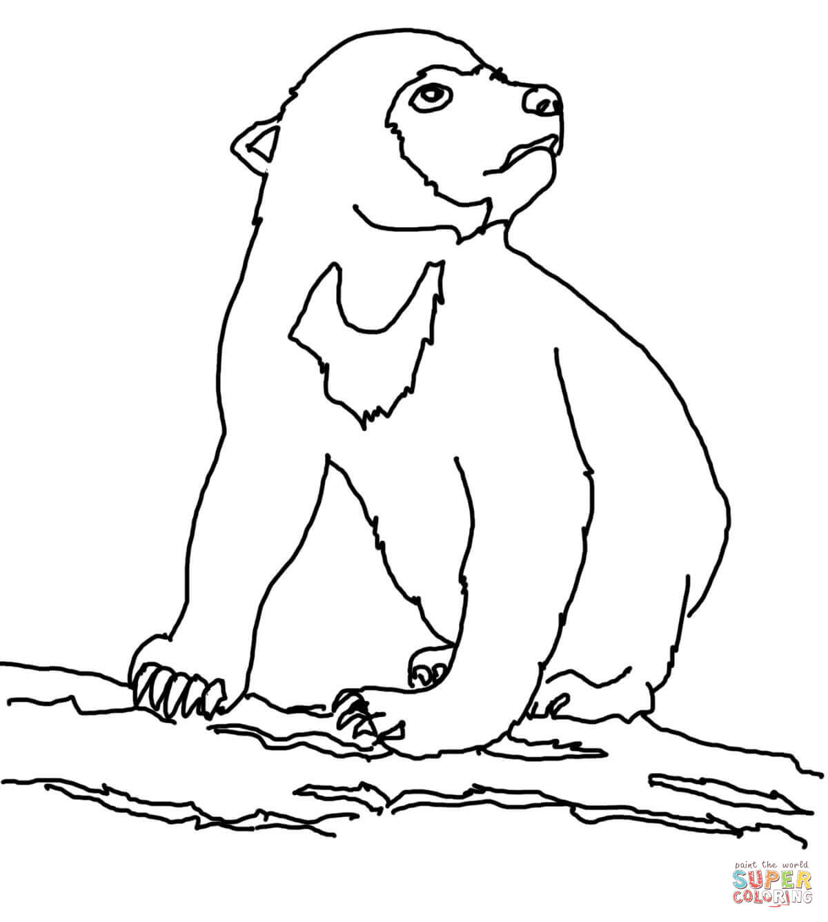 bear cub coloring pages wild animal coloring pages playful bear cubs coloring bear coloring cub pages