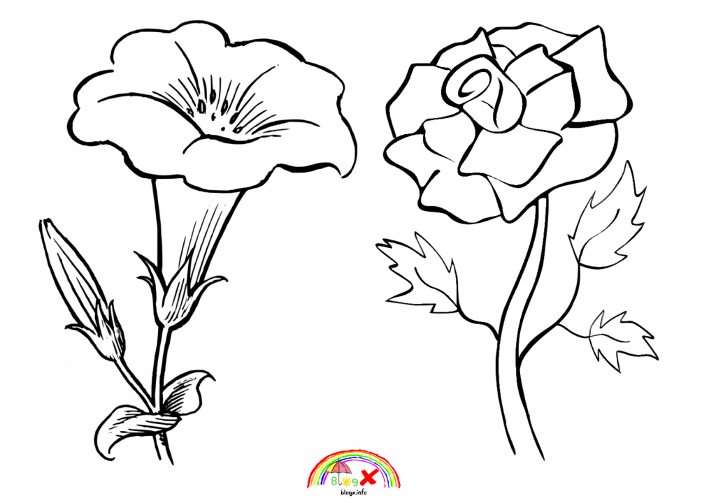beautiful flowers coloring pages beautiful flower bouquet coloring page color luna coloring flowers beautiful pages
