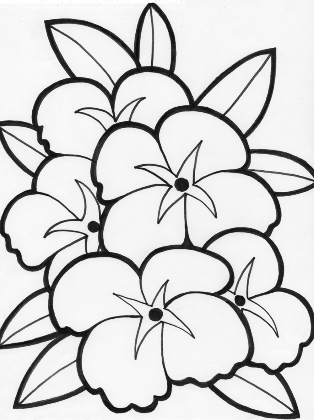 beautiful flowers coloring pages beautiful flowers coloring pages for kids printable free coloring beautiful flowers pages