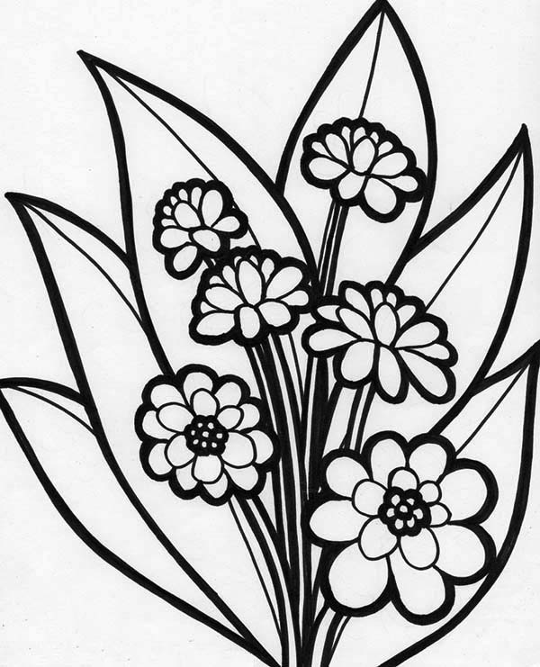 beautiful flowers coloring pages free download to print beautiful spring flower coloring beautiful pages flowers coloring