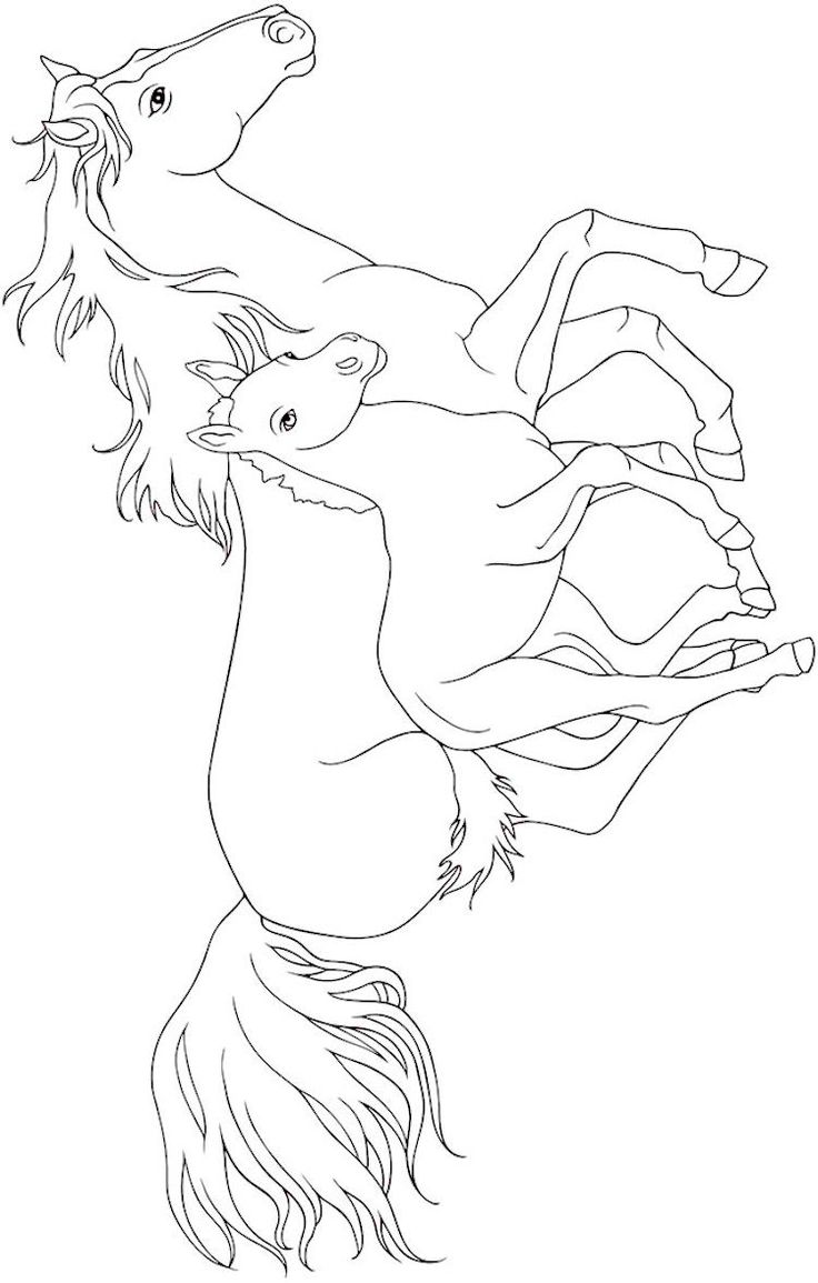 beautiful horse coloring pages beautiful horse coloring pages at getcoloringscom free horse beautiful pages coloring