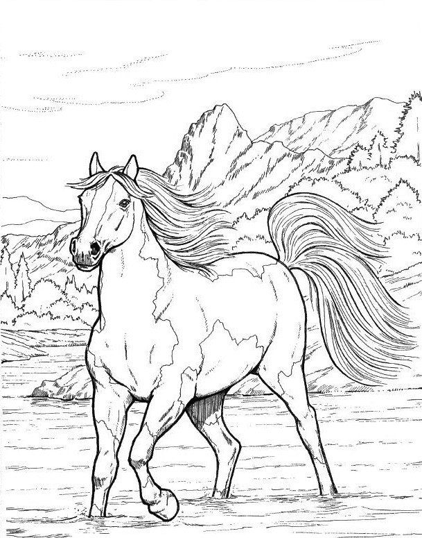 beautiful horse coloring pages coloring beautiful horse eye coloring pages coloring horse beautiful pages