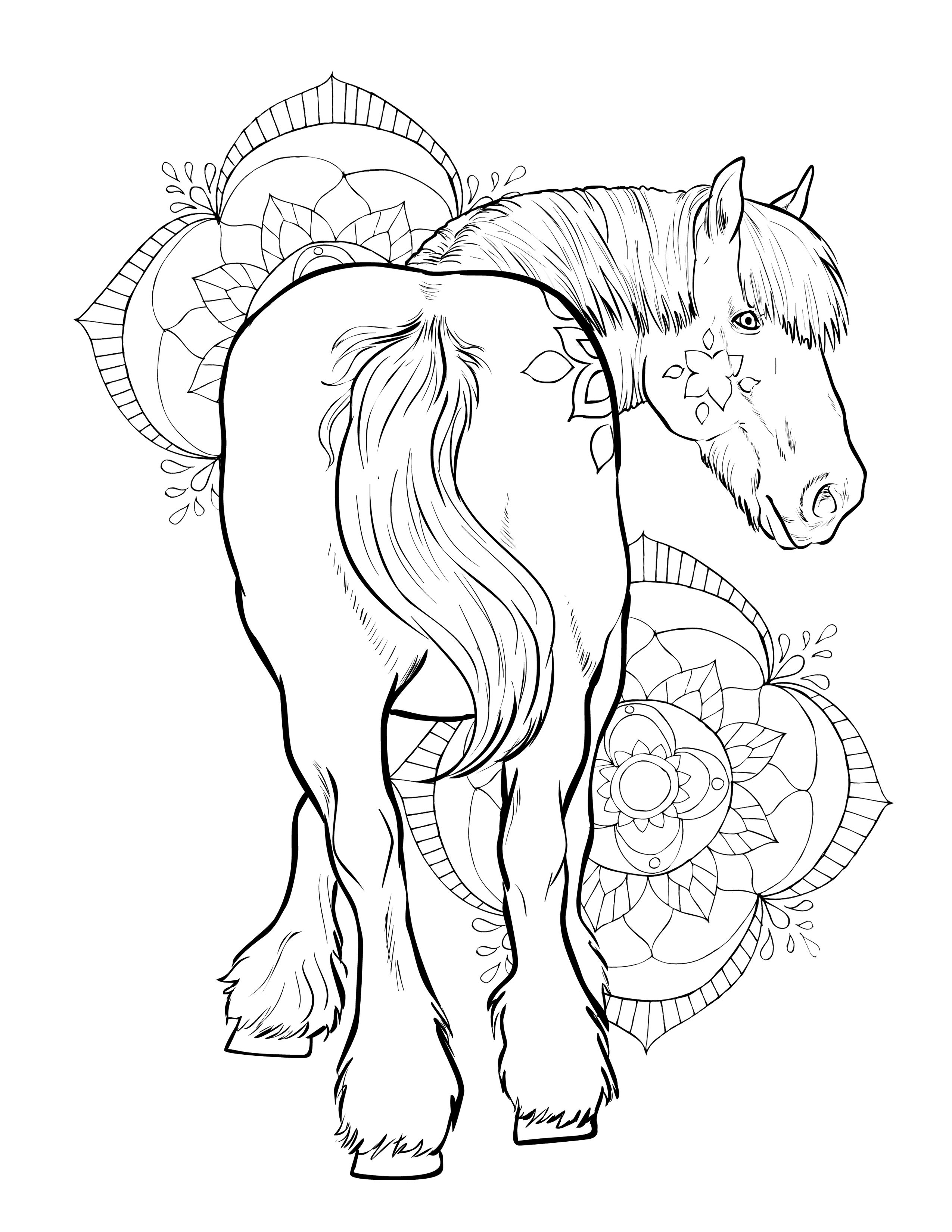 beautiful horse coloring pages free book horse horses adult coloring pages coloring horse beautiful pages