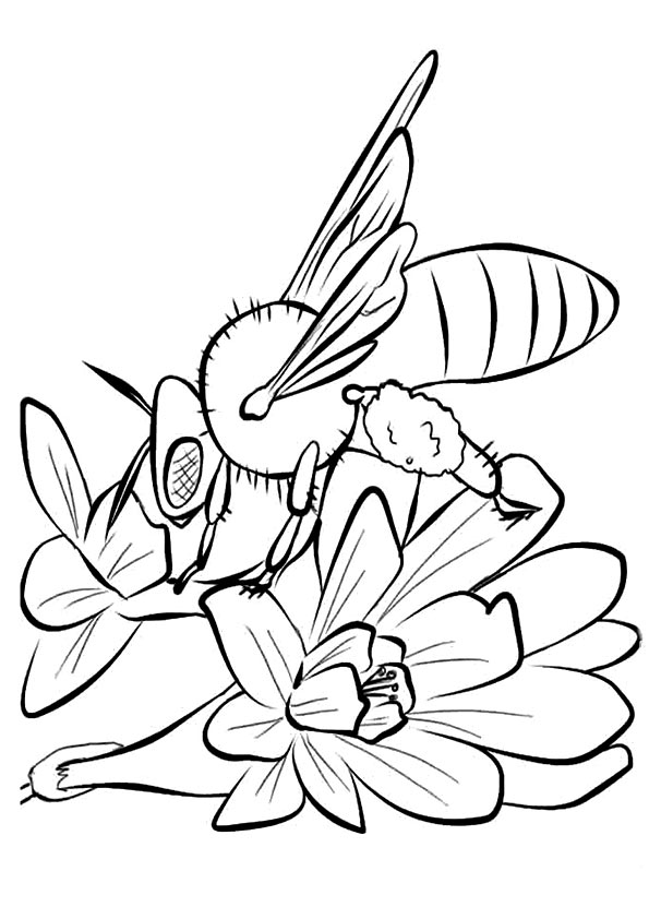 bee on flower coloring page two bumble bee looking for flowers coloring pages best on bee flower page coloring