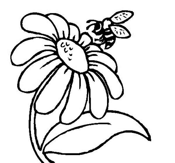 bee on flower coloring page two happy bumblebee flying over the flowers coloring page coloring page flower on bee