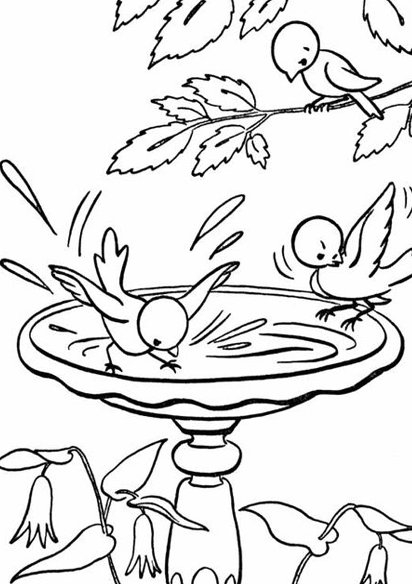 bird colouring pictures bird coloring pages bird colouring pictures