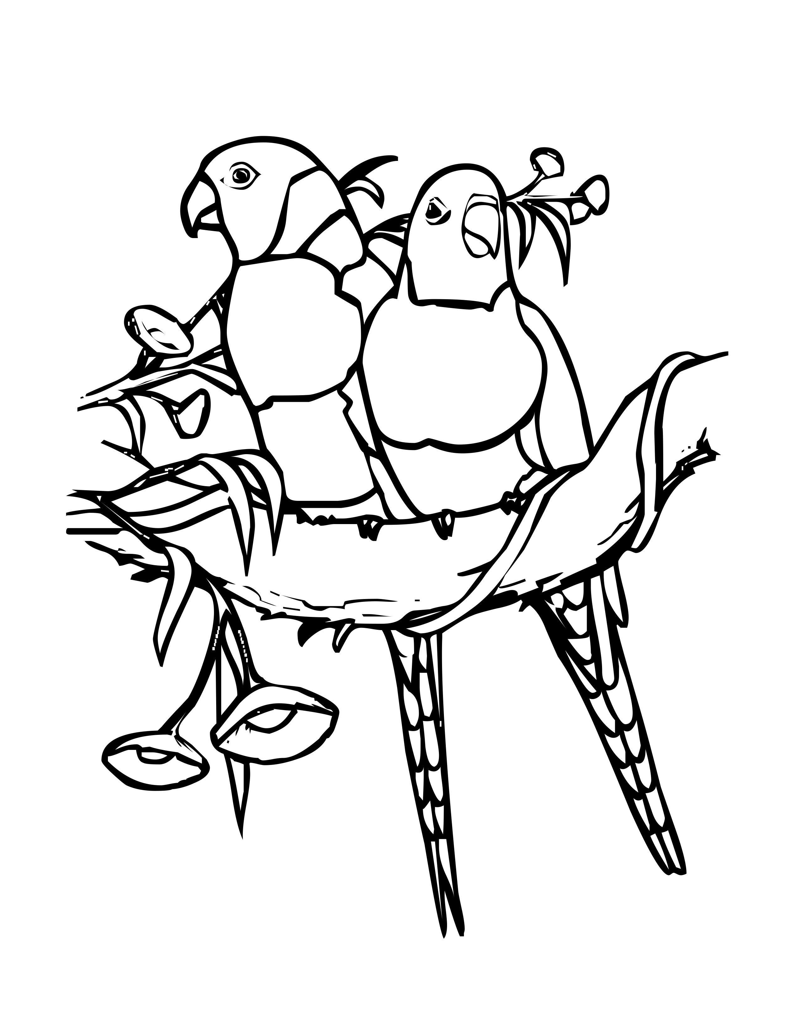 bird colouring pictures birds free to color for children birds kids coloring pages pictures colouring bird