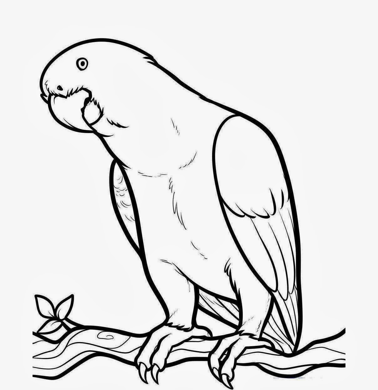bird outlines bird outline drawing at getdrawings free download bird outlines