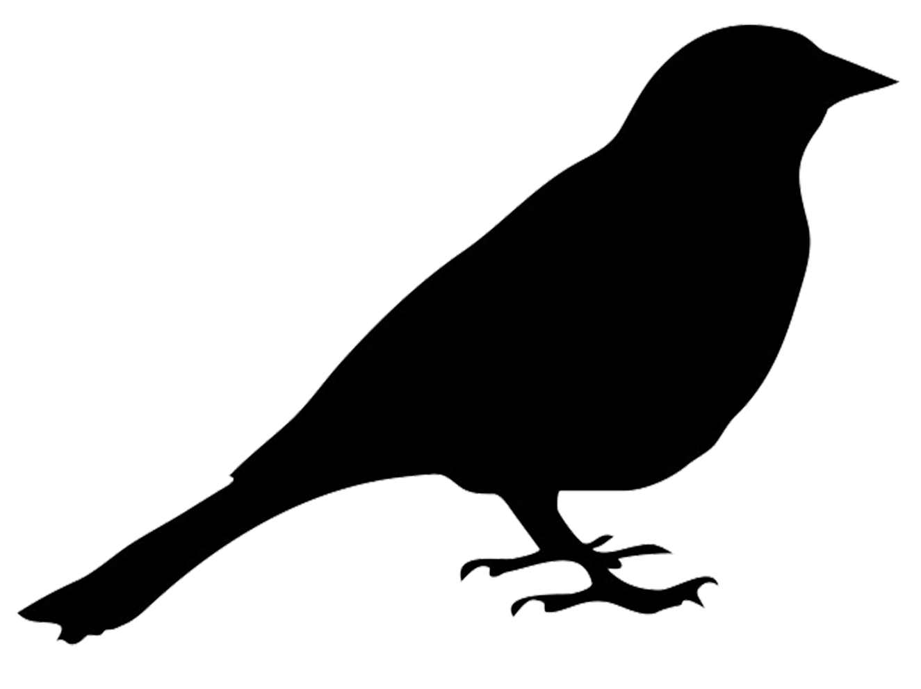 bird outlines bird outline png hd transparent bird outline hdpng images bird outlines
