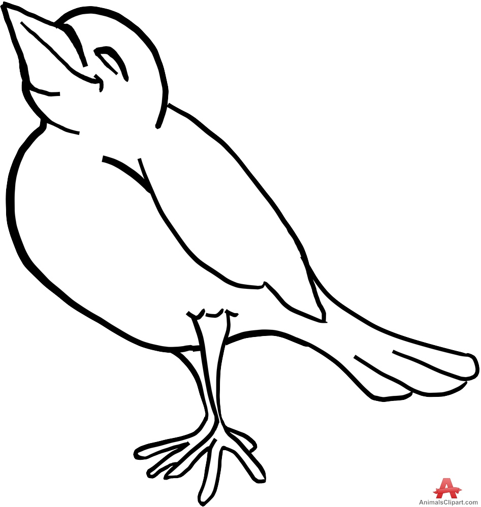 bird outlines bird silhouette outline at getdrawings free download bird outlines