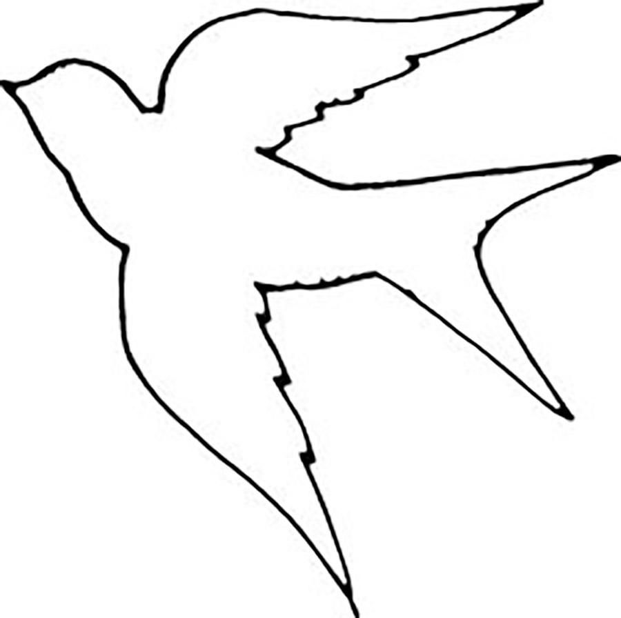 bird outlines the contours of birds free coloring pages online print bird outlines