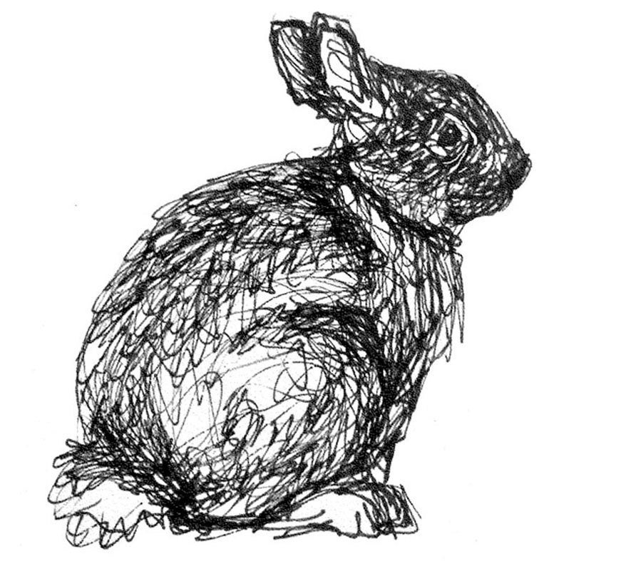 black and white rabbit drawing 618 best all things grey and or silver in nature or made white and black rabbit drawing