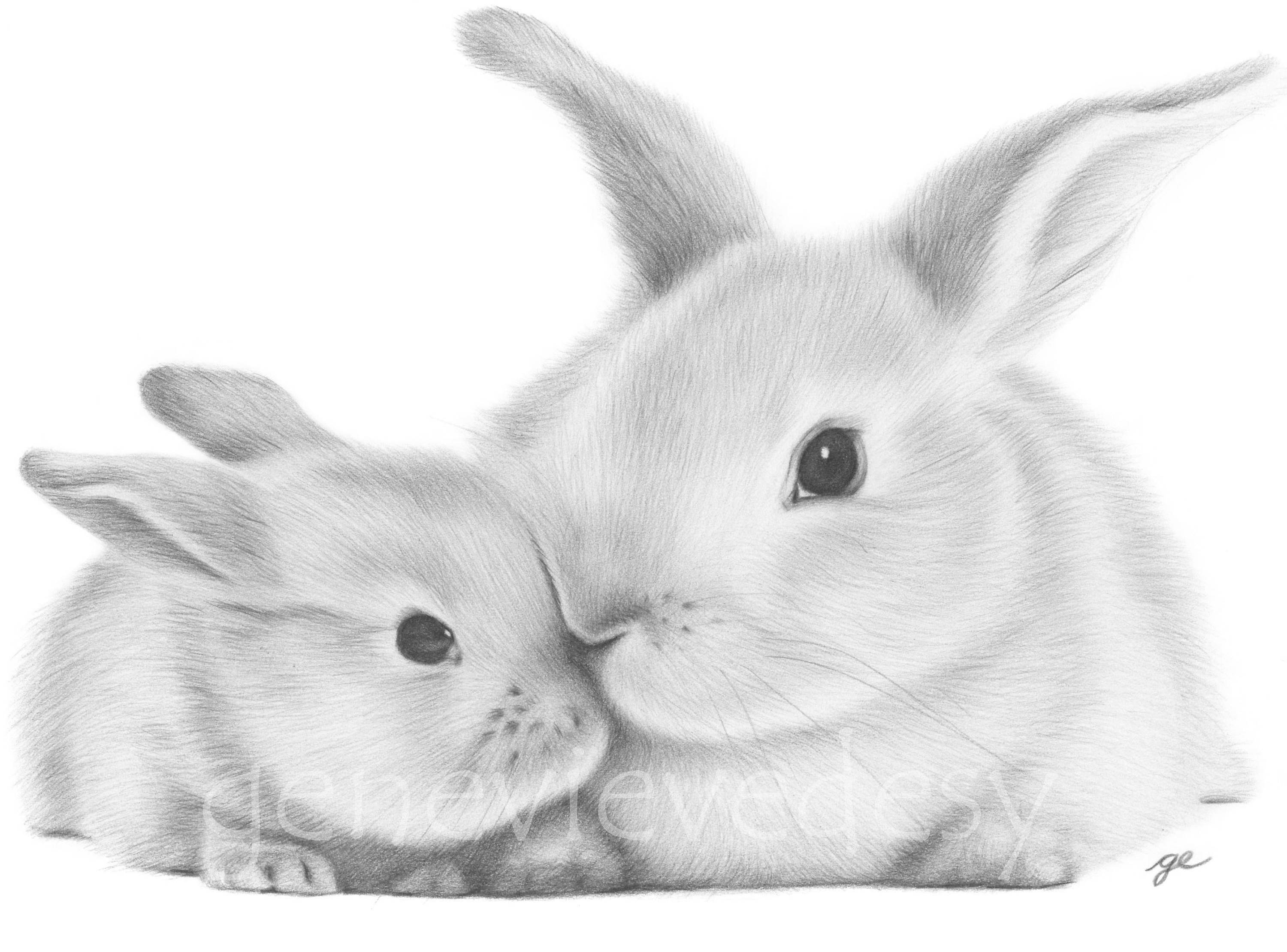 black and white rabbit drawing black and white bunny art print of a pencil drawing mommy black and rabbit drawing white
