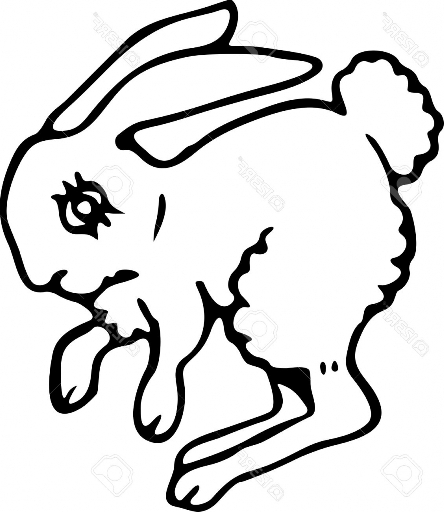 black and white rabbit drawing black and white rabbit drawing at getdrawings free download rabbit drawing white black and