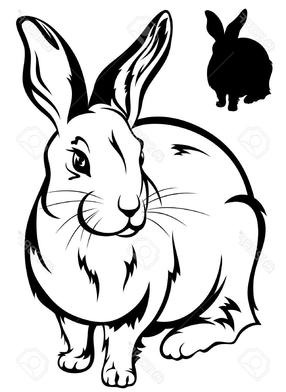 black and white rabbit drawing outline of a bunny free download on clipartmag drawing black rabbit white and