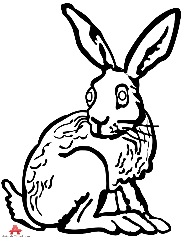 black and white rabbit drawing rabbit outline free download on clipartmag drawing and rabbit white black