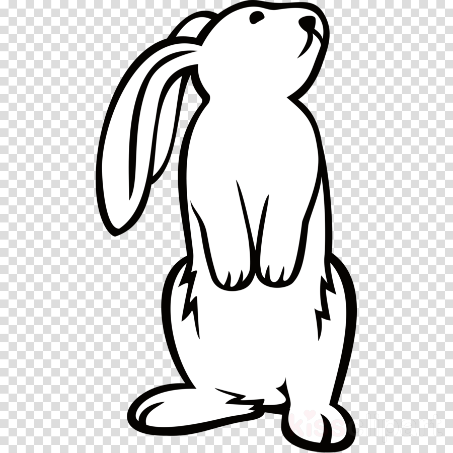 black and white rabbit drawing rabbit standing clipart easter bunny rabbit clip art and white black rabbit drawing