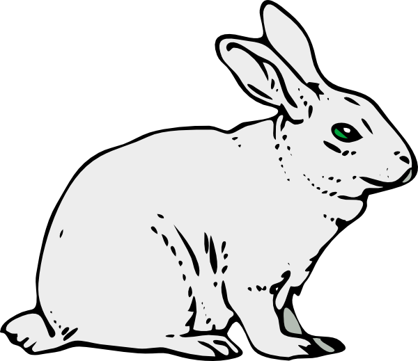 black and white rabbit drawing white rabbit drawing at getdrawings free download rabbit and black drawing white