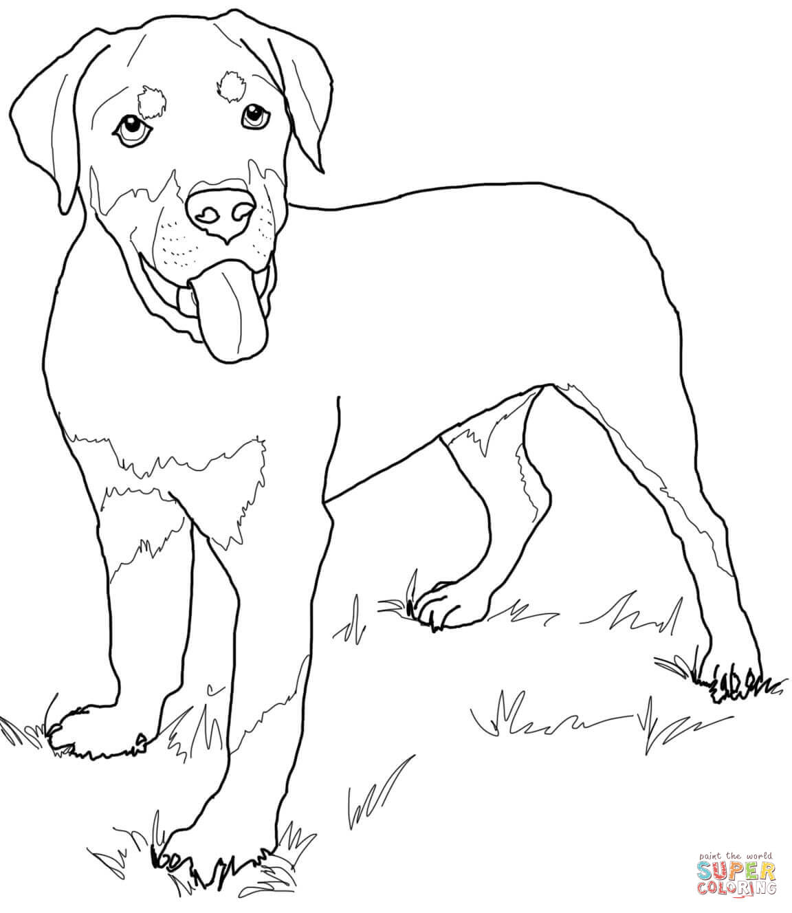 black lab coloring pages black lab line drawing at getdrawings free download pages lab coloring black