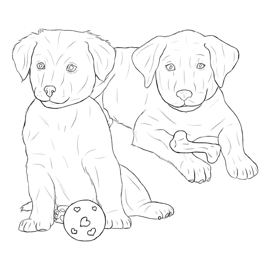 black lab coloring pages labrador retriever puppies by midnightfoal on deviantart lab pages coloring black