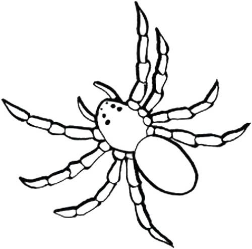 black spider coloring page black spider to cut out coloring page spider coloring black page