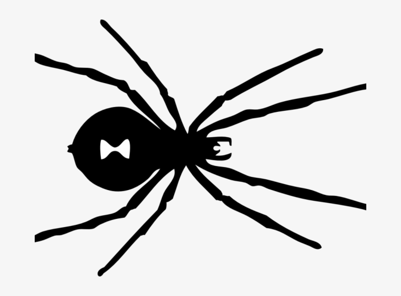 black spider coloring page free printable spider coloring pages for kids coloring spider black page