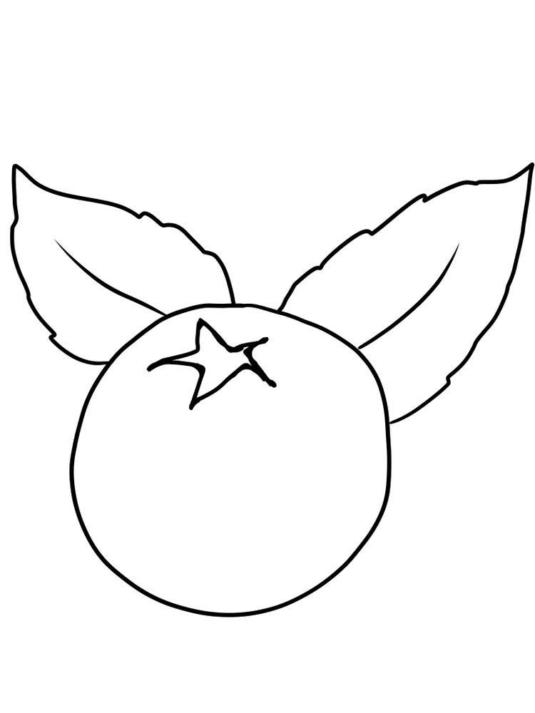 blueberries for sal coloring page blueberry coloring page at getcoloringscom free for coloring page sal blueberries
