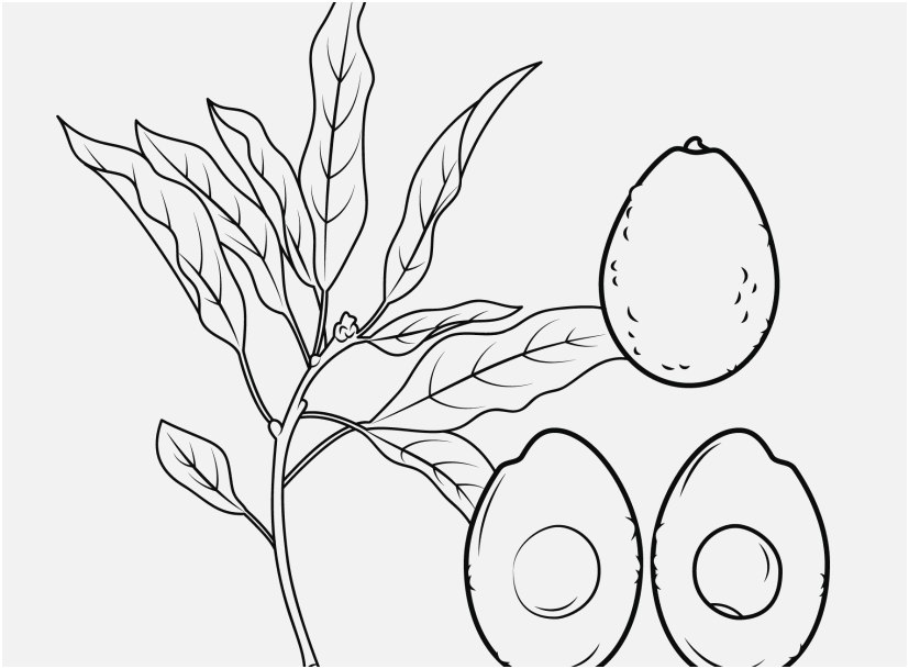 blueberries for sal coloring page blueberry coloring page free printable coloring pages for blueberries sal page coloring