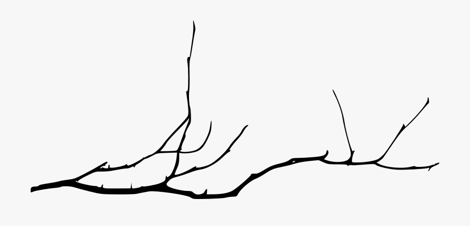 branch drawing cherry blossom tree branch drawing free download on drawing branch