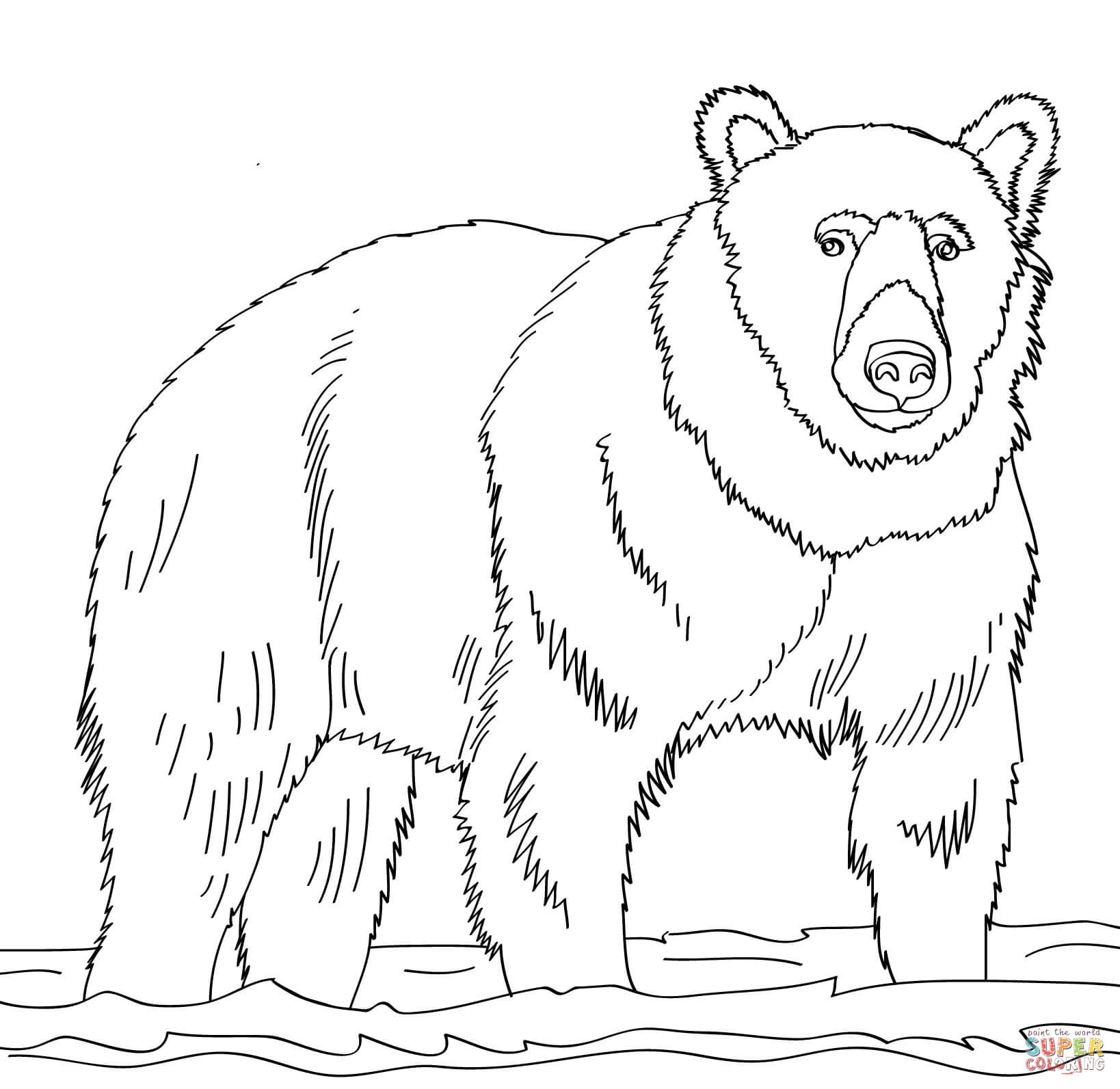 brown bear colouring page brown bear brown bear what do you see coloring pages colouring brown bear page