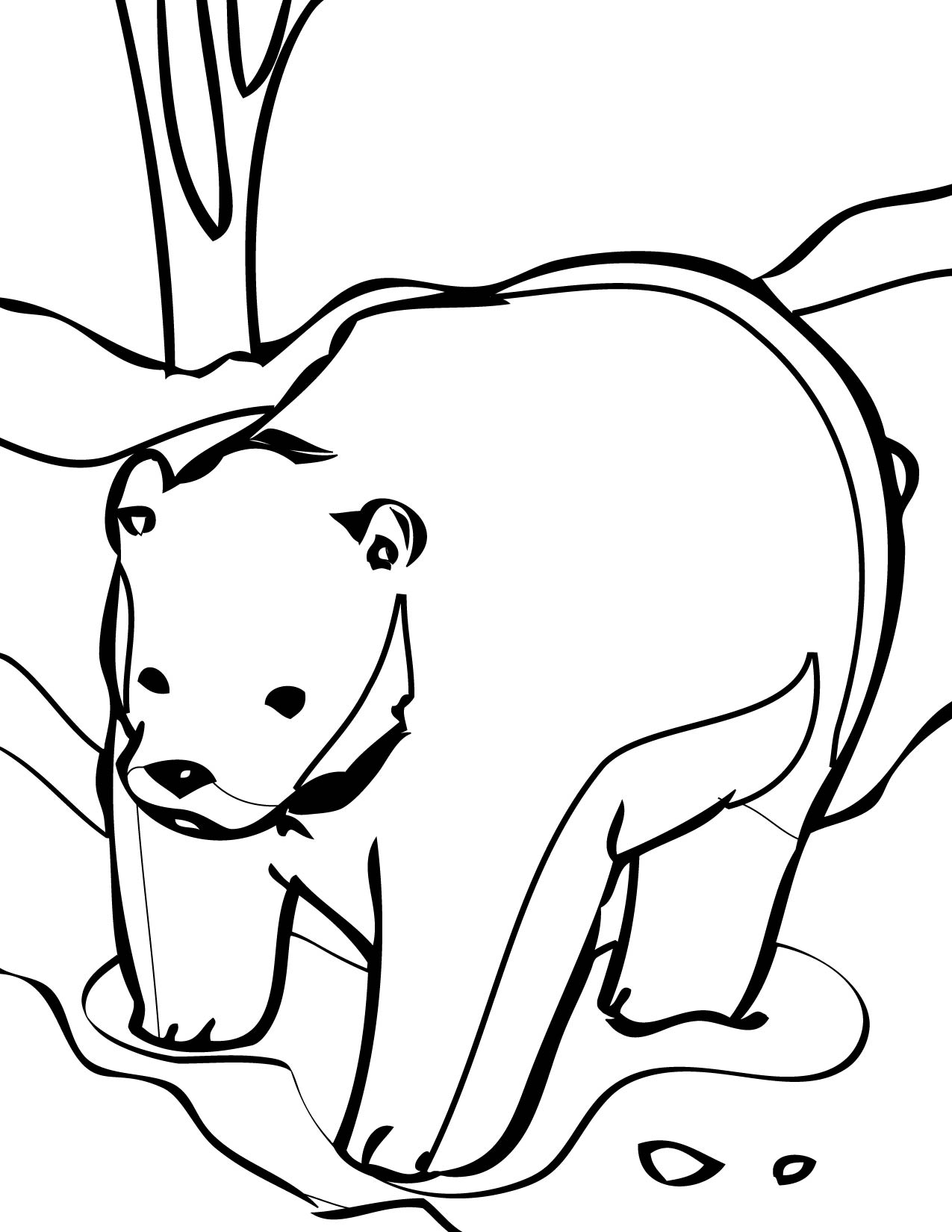 brown bear colouring page brown bear coloring pages download and print for free colouring brown bear page