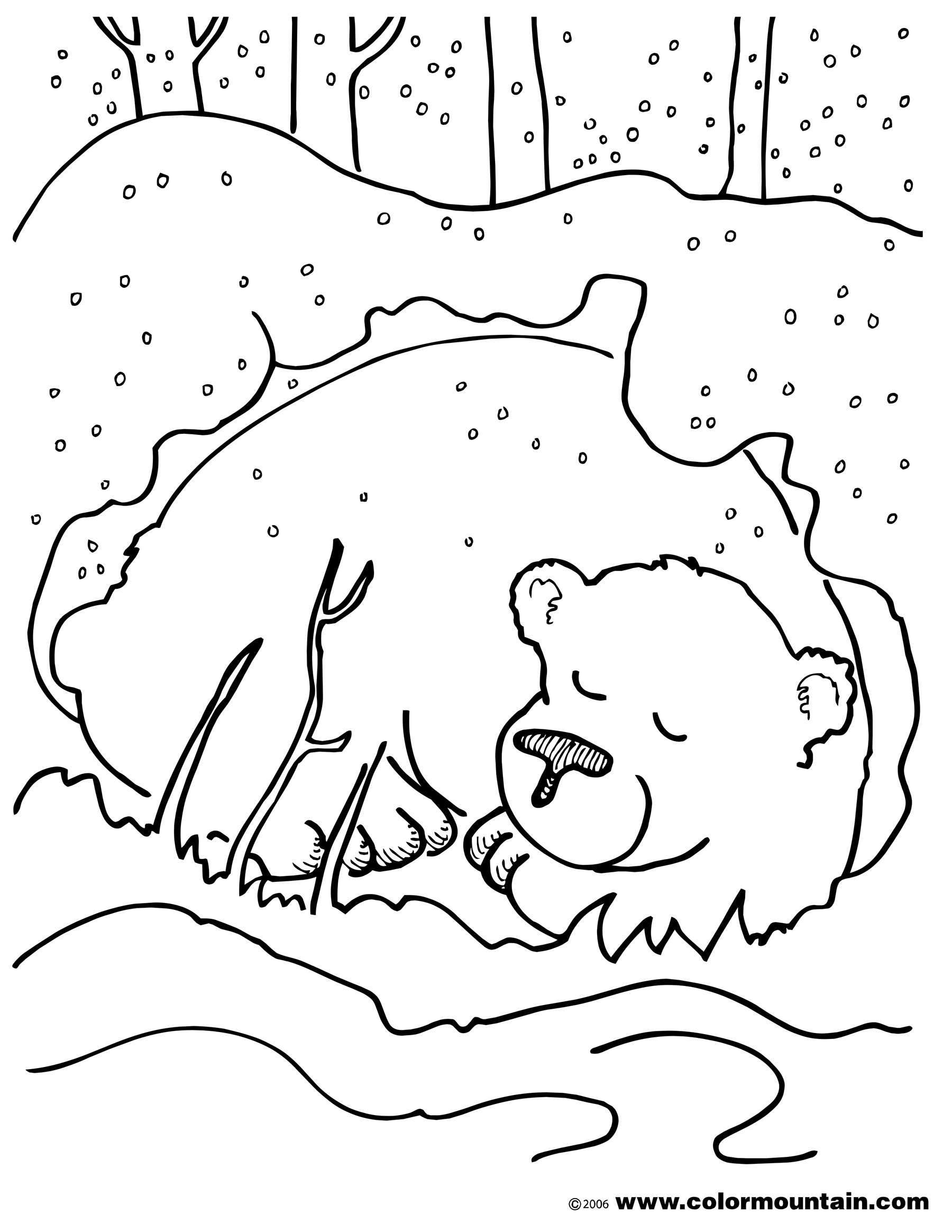 brown bear colouring page brown bear line drawing at getdrawings free download page bear brown colouring