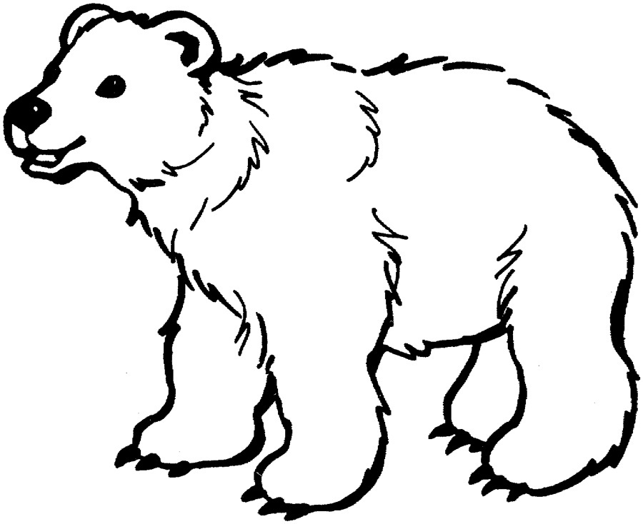 brown bear colouring page brown bear printables coloring home page brown bear colouring