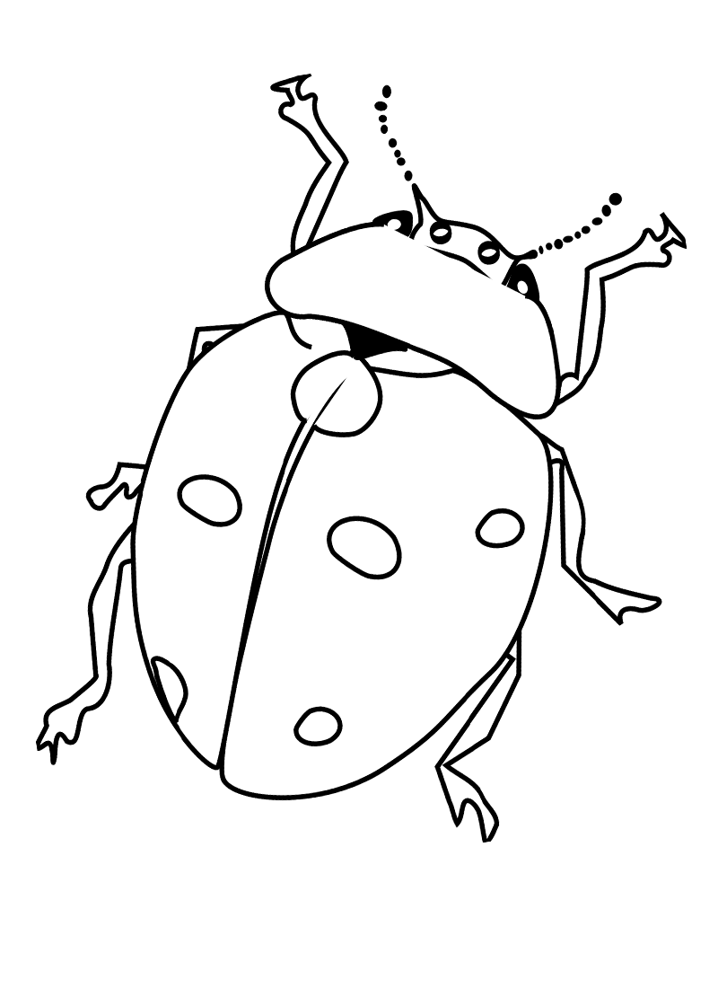 bug coloring pages cute bug drawing at getdrawings free download pages coloring bug