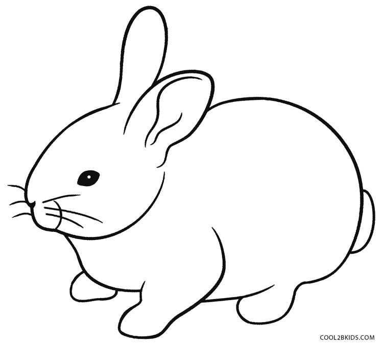 bunny picture to color bunny picture to color color bunny picture to