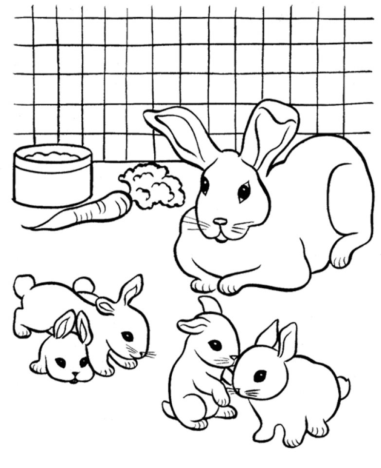 bunny picture to color cartoon bunny coloring page free printable coloring pages bunny picture color to