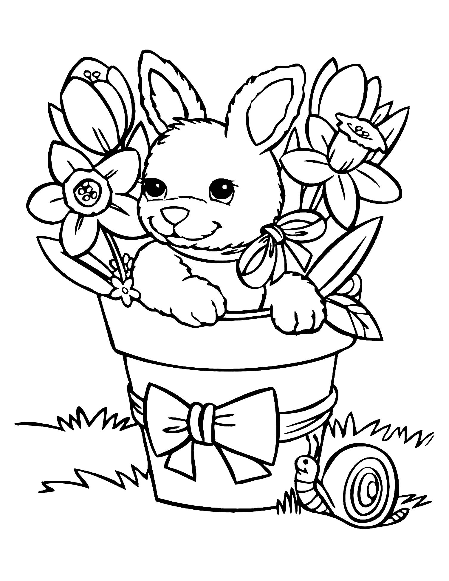 bunny picture to color cute bunny colouring image picture bunny color to