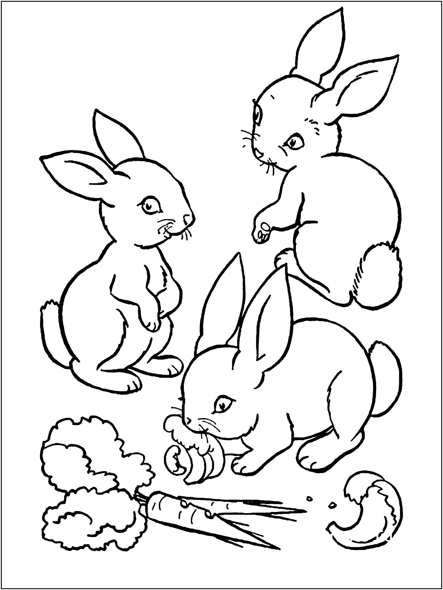 bunny picture to color rabbit to download rabbit kids coloring pages color to bunny picture