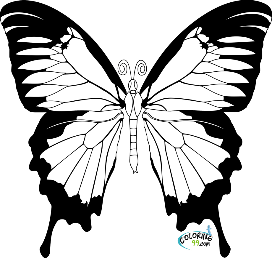 butterfly color page butterfly coloring pages and printables animal coloring butterfly page color