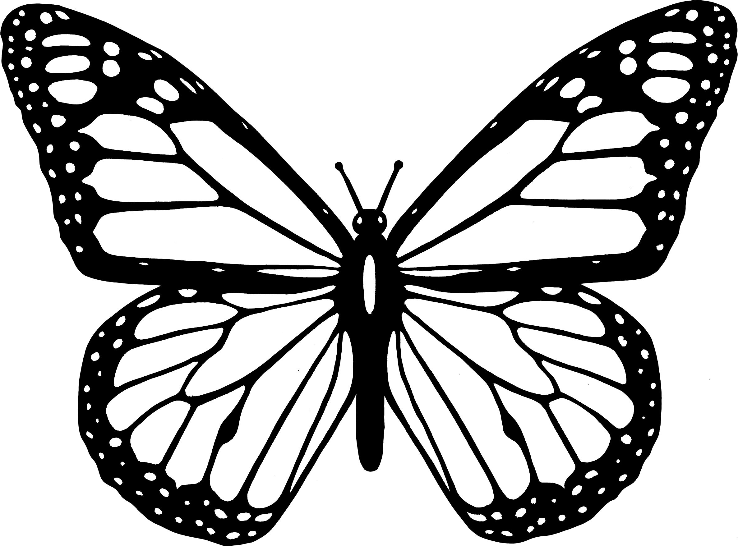 butterfly color page butterfly coloring pages for kids color butterfly page