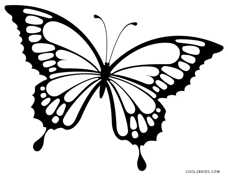 butterfly color page butterfly coloring pages for kids color butterfly page 1 1